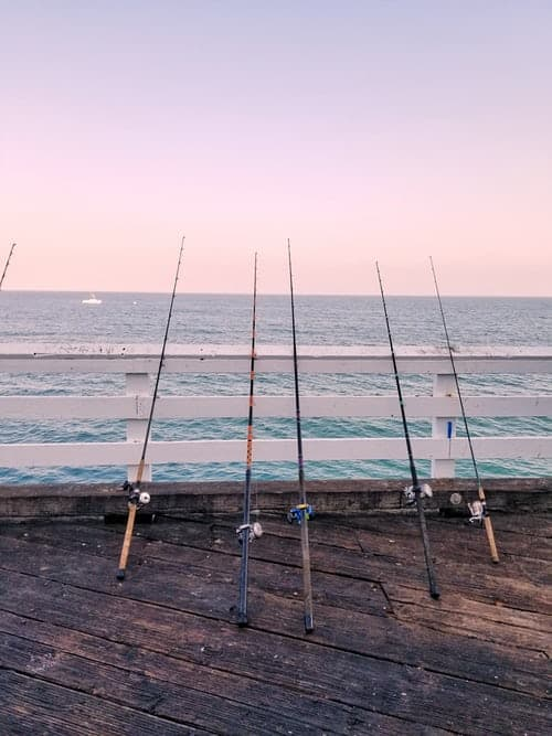 The Fishing Reels Choices For Perfect Fishing