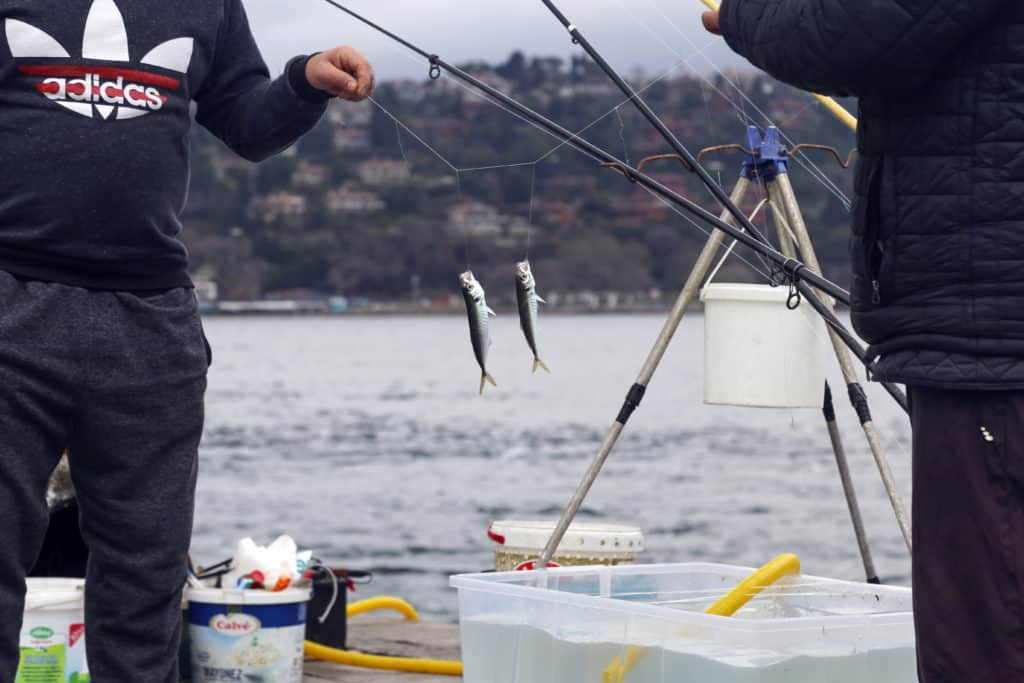 Ideas To Improve Your Fishing Skill